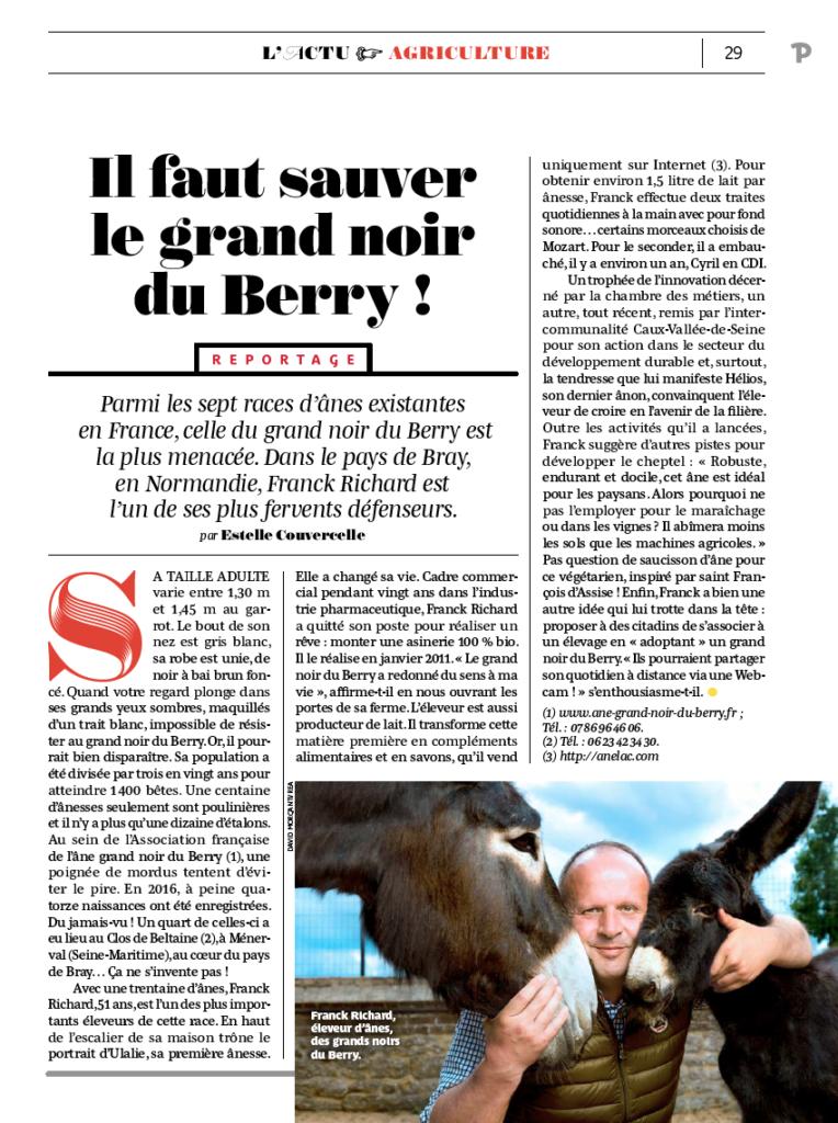 Ane Grand Noir du Berry - Race menacée d'extinction