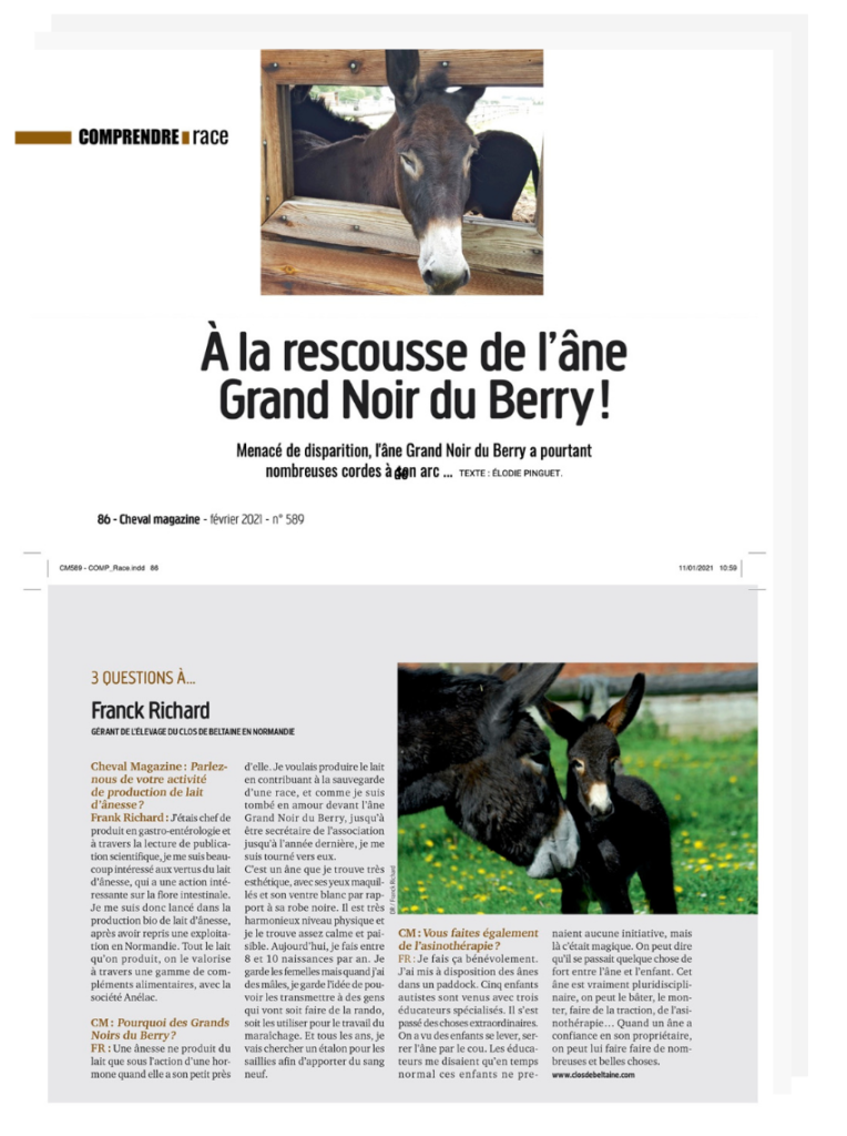 Sauvegarde de la race Âne Grand Noir du Berry